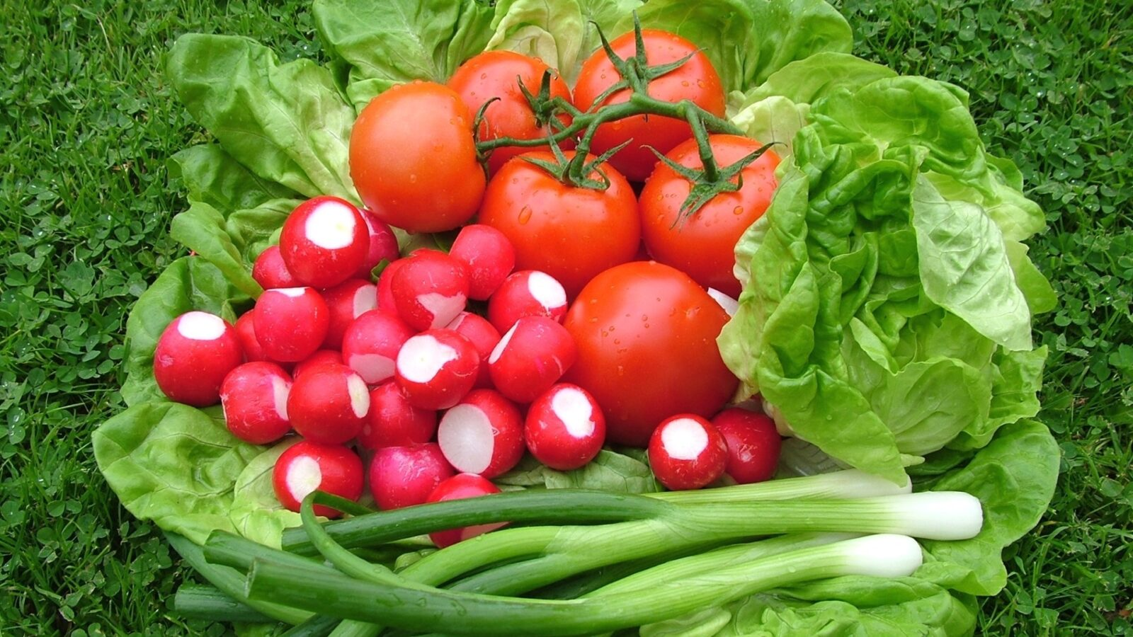 7 весенних салатов: легкие, сочные и полезные!