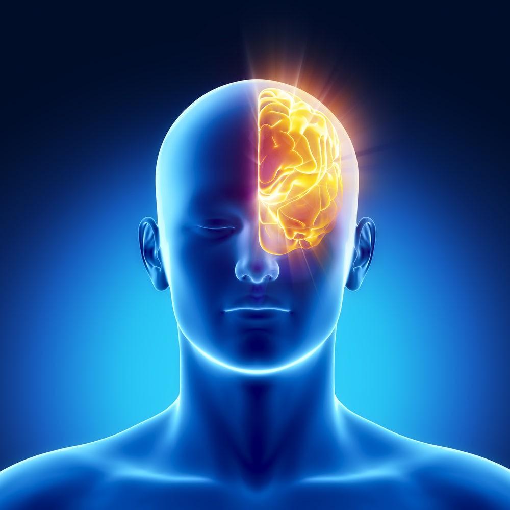 Несколько фактов о мозге и подсознании от нейролингвиста Татьяны Черниговской