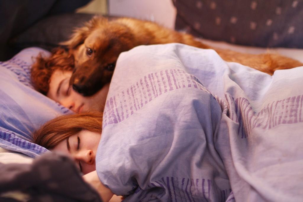 Что означает поза, в которой вы с любимым спите
