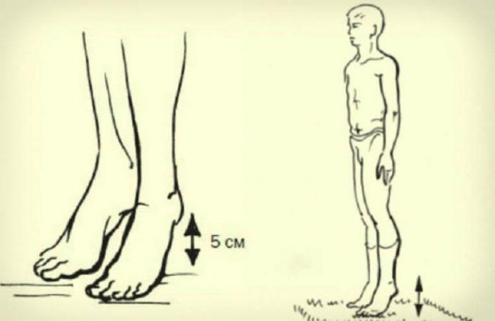1 простое упражнение для профилактики  тромбофлебита, инфаркта миокарда и инсульта от академика Микулина