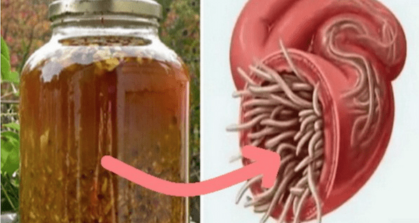 Естественный антибиотик, который вы можете приготовить сами