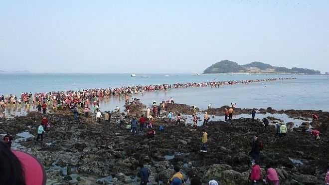 Современное чудо на острове Чиндо