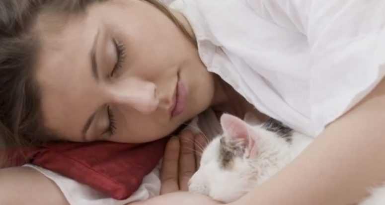 Вам надо это узнать: если вы тоже разрешаете коту спать в вашей постели
