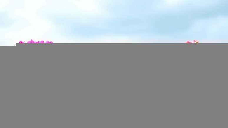 Чтобы цветы в доме цвели пышно и долго: маленькая хитрость