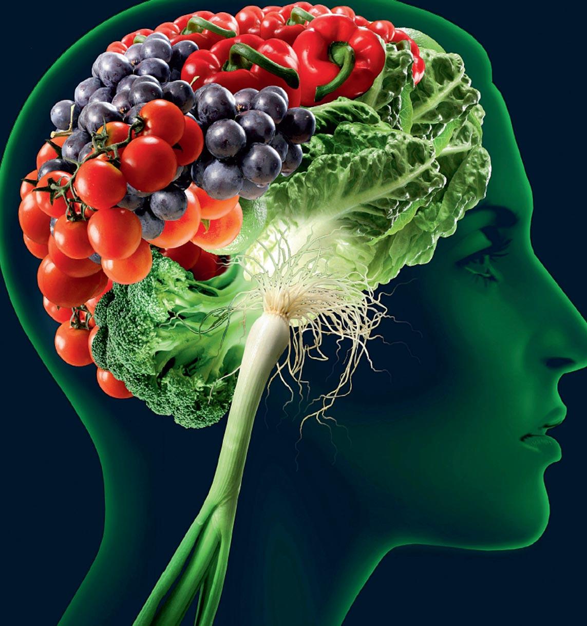 Лекарственные растения для улучшения мозгового кровообращения