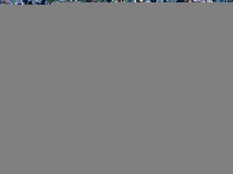 Волшебно про ангелов