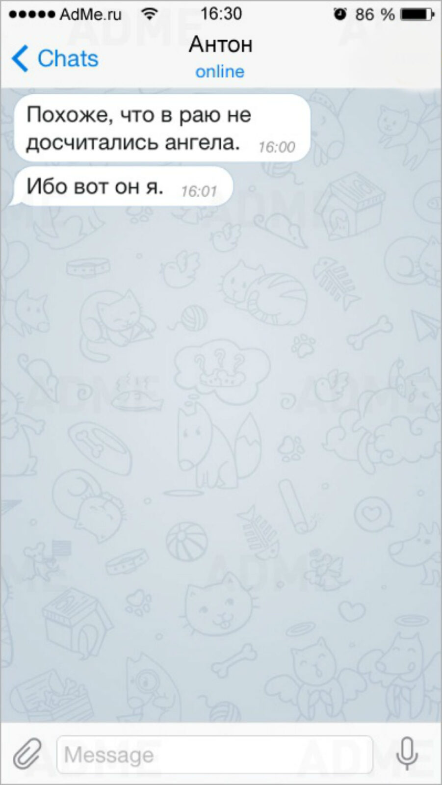 Жизненные СМС, читая которые хочется плакать от смеха