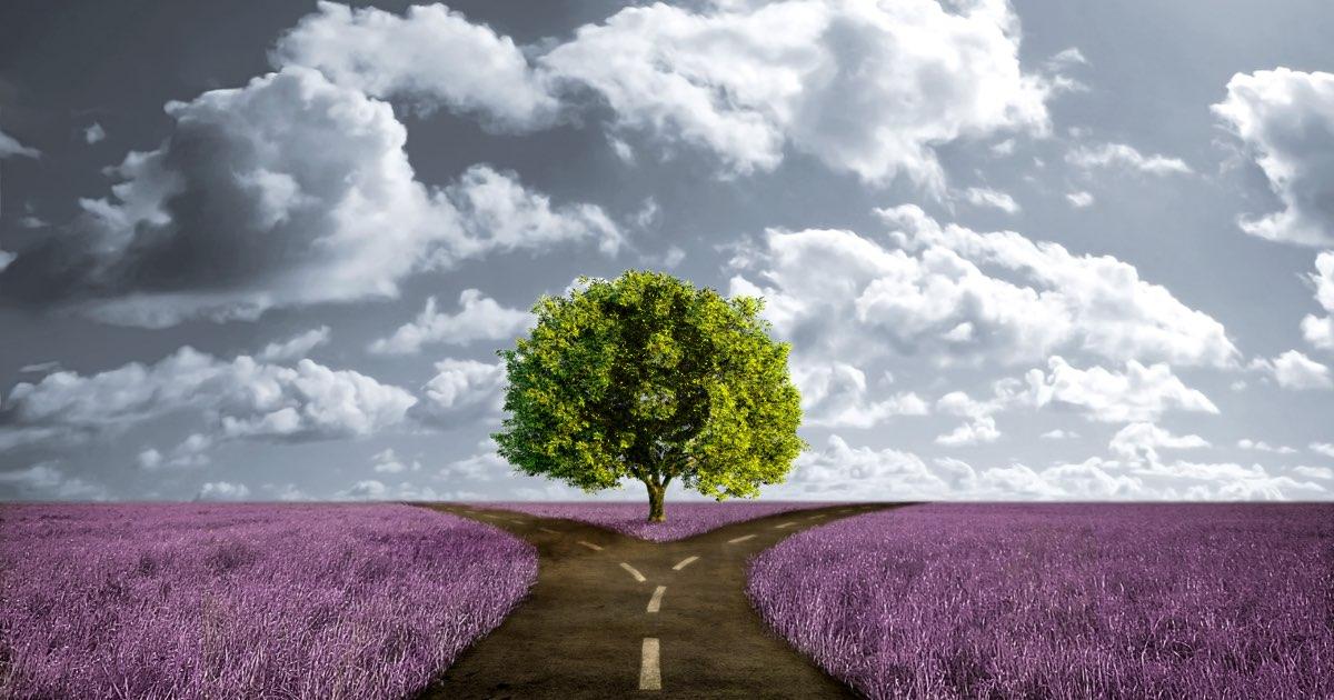 Тест: куда приведёт вас ваша жизненная дорога