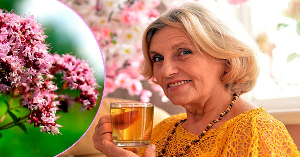 Пейте этот чай 3 раза в неделю и вы забудете о больницах и докторах! Стоит попробовать