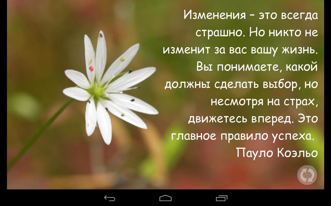 Невероятно красивые и мудрые цитаты, которые стоит запомнить