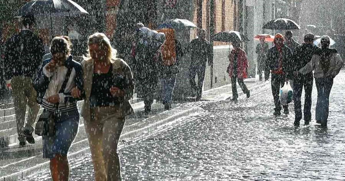 В нашем городе дождь. Любимые стихи